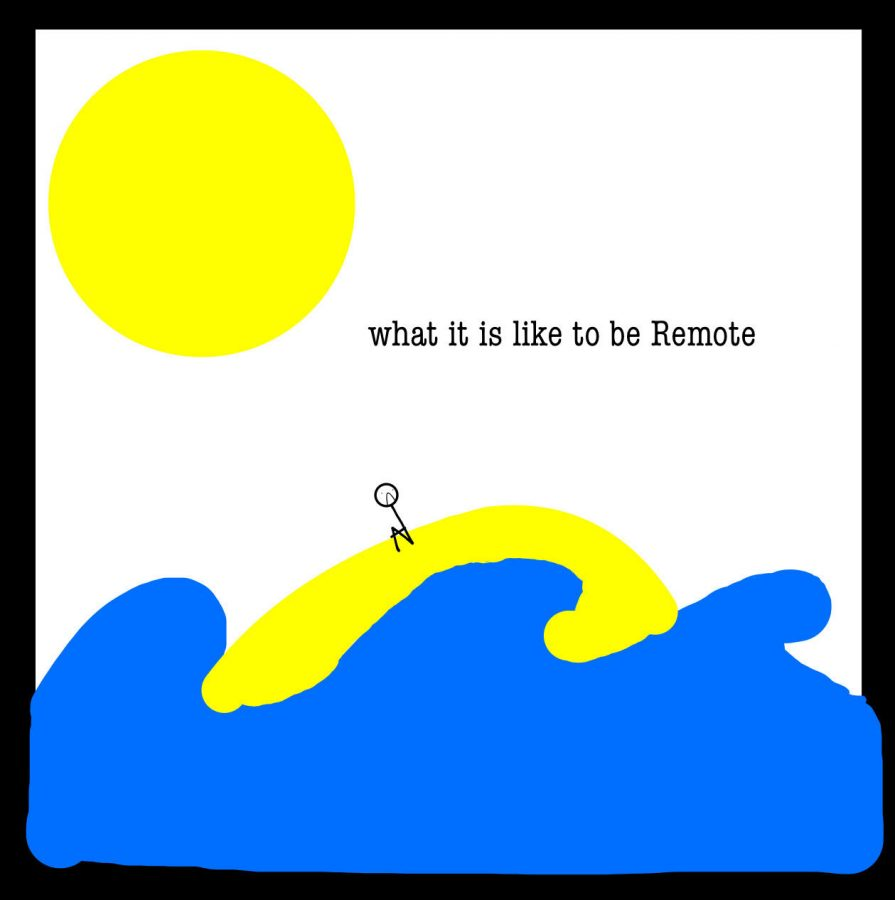 What's It Like To Be Remote?